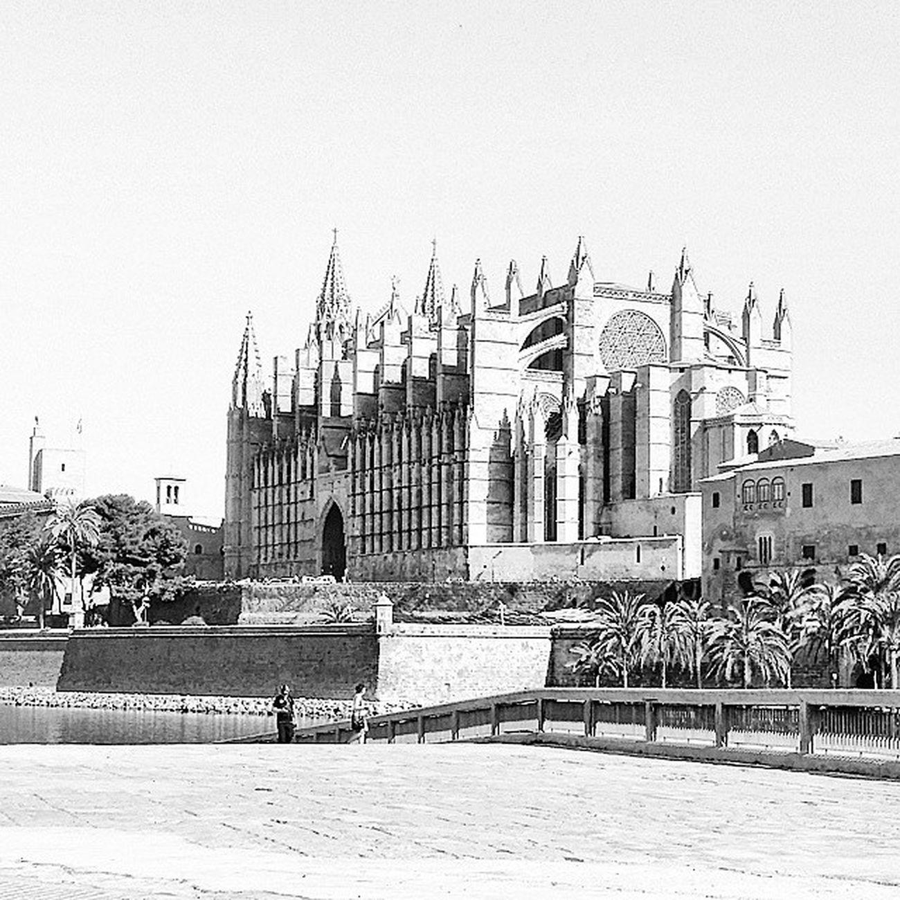 La Seu Catedral Catedralpalma Palmademallorca Palma Tipicalmallorca Igersmallorca Ilovemallorca Fotos_de_mallorcabyn Enfocae_bw