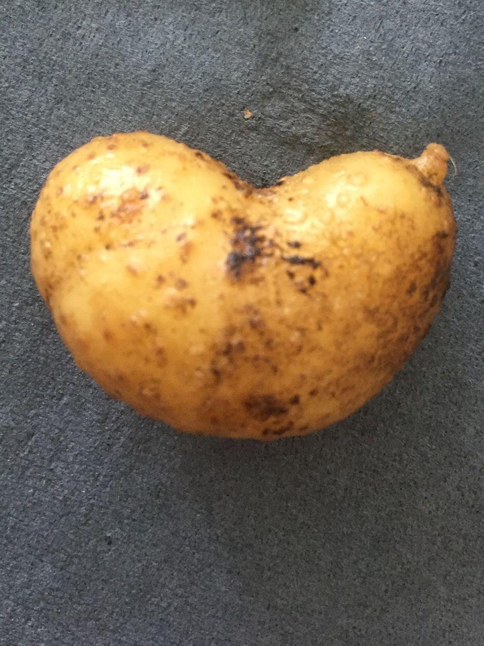 Heart Heart ❤ Potato Potatoes Food Lol Food 😂 Hello World Check This Out Eyeemfood EyeEm EyeEm Nature Lover Foodporn Hearts