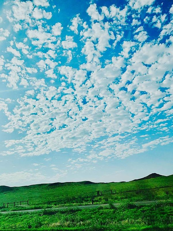 Cloud - Sky Beauty In Nature Nature Agriculture Landscape Field Sky Tree Dramatic Sky Blue Scenics Rural Scene Day Tranquility No People Growth Outdoors Freshness Mountain Tree Area CBMetro313Pics Clouds And Sky Puffy Clouds The Great Outdoors - 2017 EyeEm Awards Live For The Story The Great Outdoors - 2017 EyeEm Awards