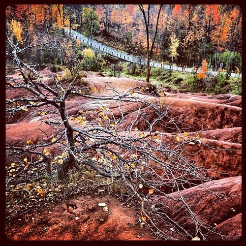 Red Mounds of Cheltenham Badlands. Canada 416 Cheltenham Iphoneonly Mars Cheltenham_badlands Photooftheday Caledon Planet Red_mounds Picoftheday All_shots Instamood Bestoftheday Ontario Instagood Webstagram Igharjit Badlands Guelph Foliage 905