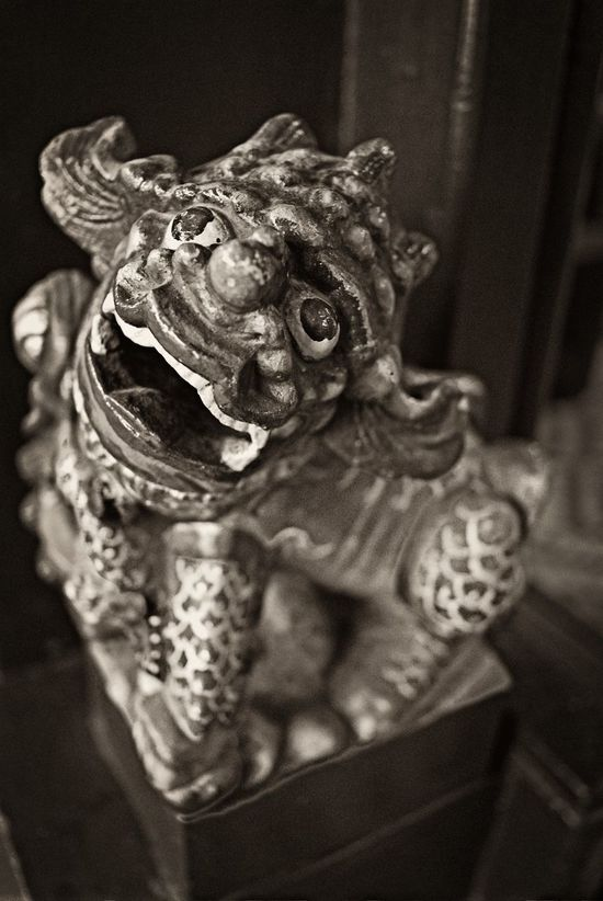 Imperial Guardian Lion Bokeh Close-up Focus On Foreground Guardian Lion Monochrome Religion Selective Focus Still Life No People