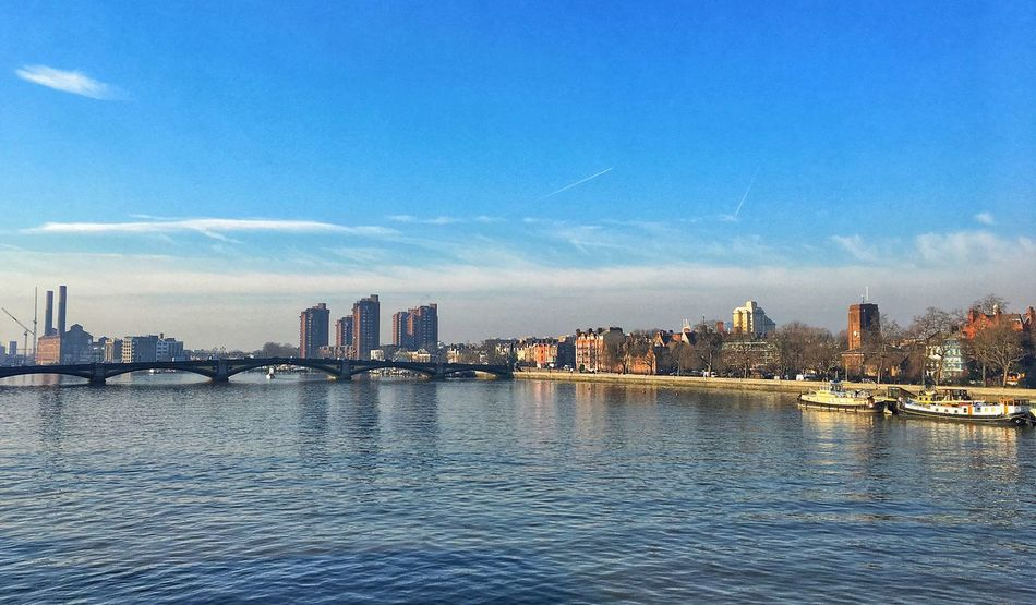 From the bridge.. London Albert Bridge City Cityscape River Thames Winter Spring