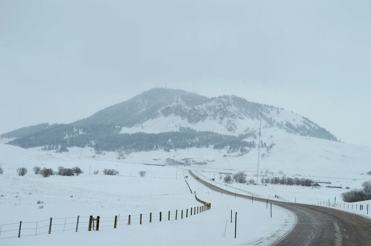 Snow Mountain Landscape Wilderness Cold Temperature Winter Forest Outdoors Nature No People Tree Beauty In Nature Polar Climate Extreme Weather Travel Ontheroadagain The Way Forward mountains Wildwildwest Eye4photography  Eyem Best Shots Fresh On Eyeem  Eyemmarket EyeEmBestPics EyeEm Gallery Truckdriving