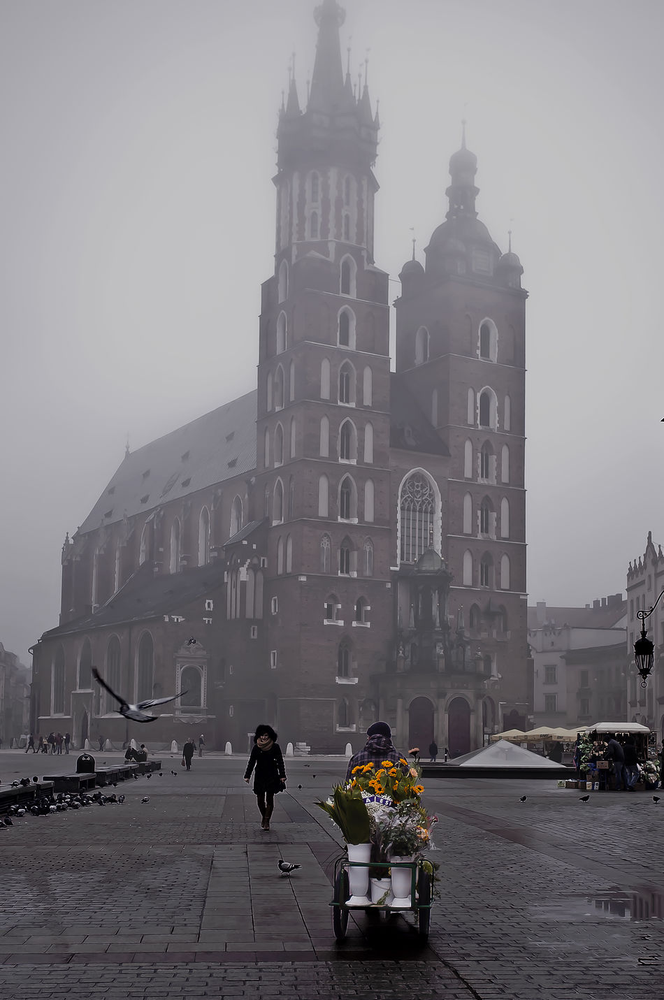 Architecture City Day Kraków, Poland Lifestyles Main Square People Streetphotography