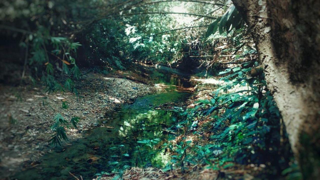 Aliran air dari sumur tiga, atau passawwang tallu. Colour Of Life