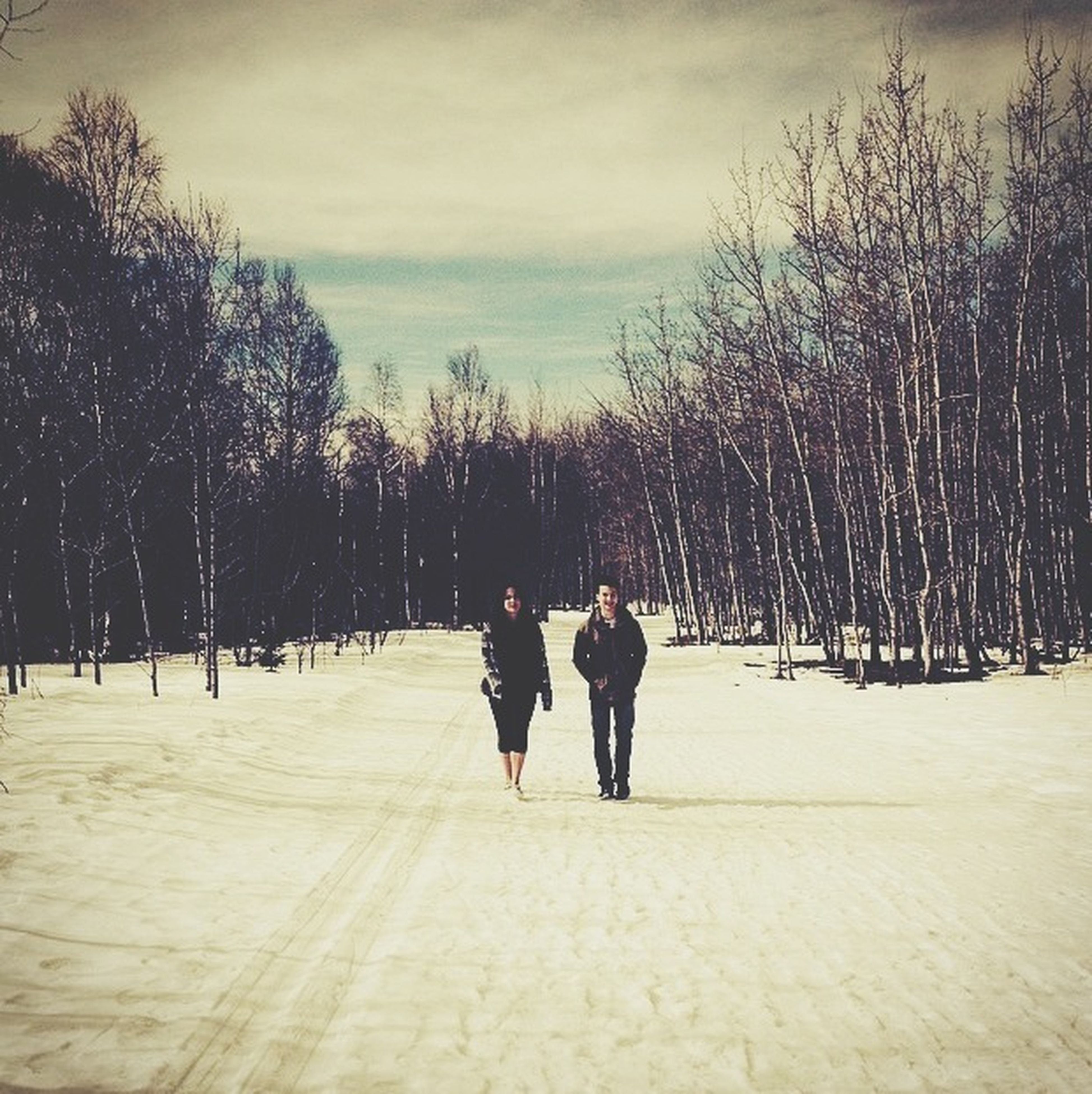 tree, rear view, walking, full length, lifestyles, the way forward, men, leisure activity, sky, togetherness, person, treelined, season, cold temperature, nature, winter, footpath, weather