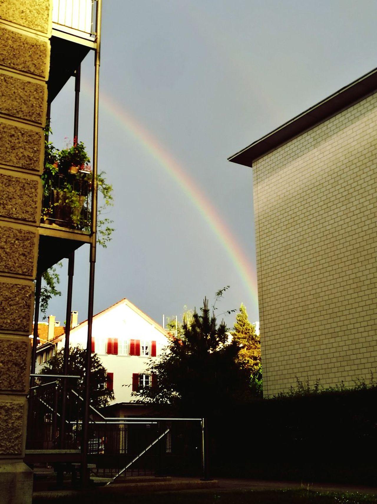 Rainbow HighLife. MaryJane♥️