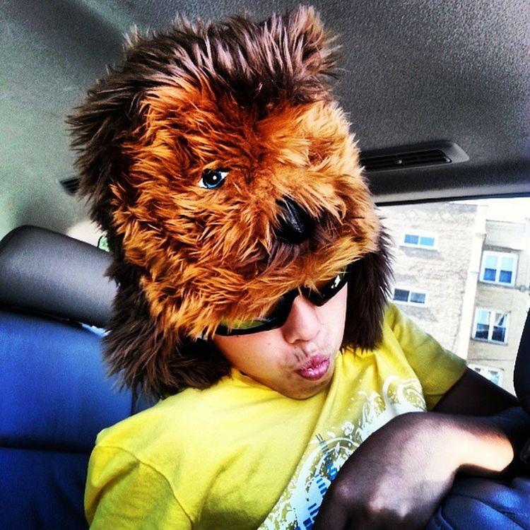 Rockstar Chewbacca Coolhat  @hayzooloragon