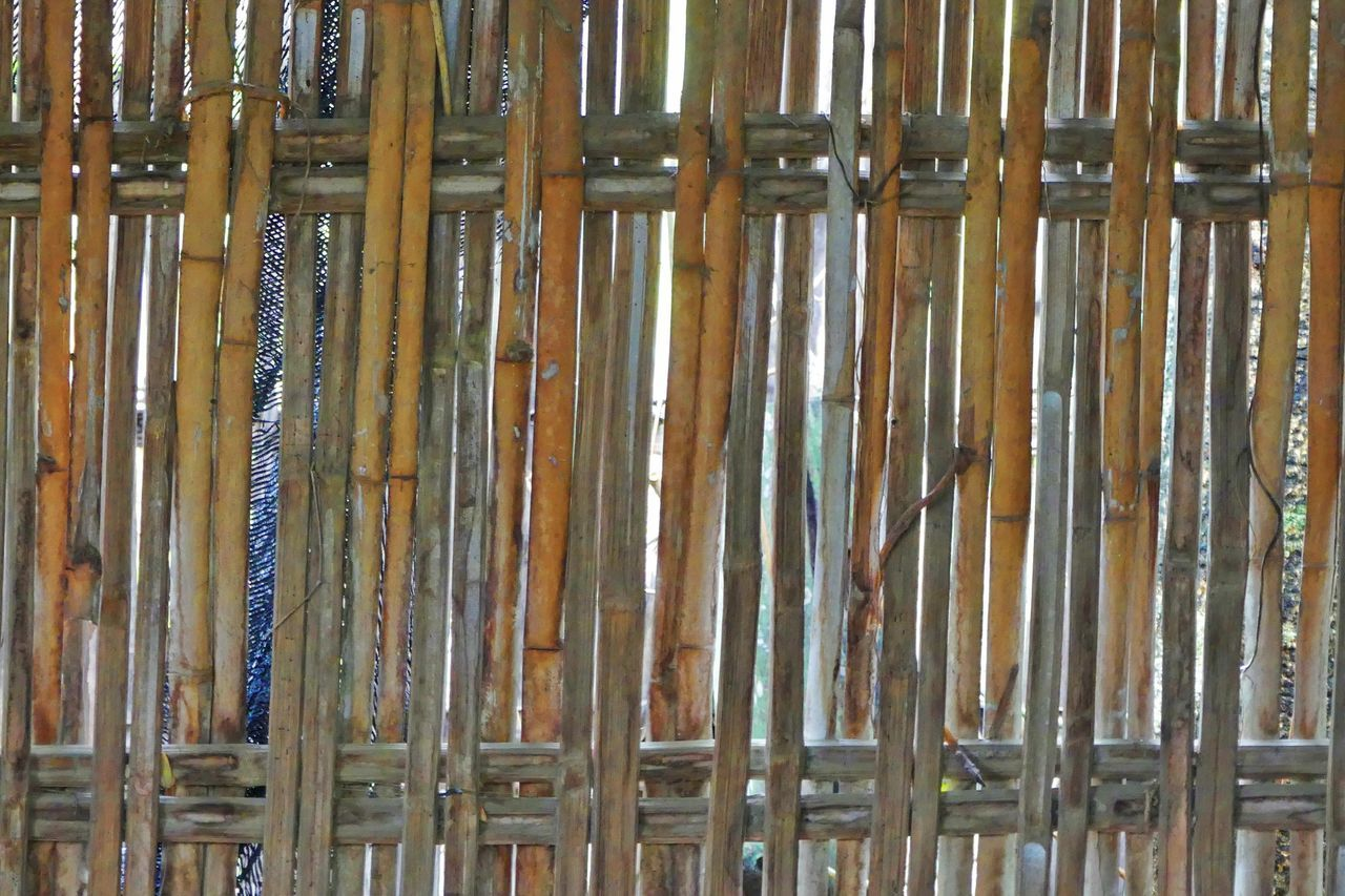DIY Natural Bamboo Fence Backgrounds Bamboo Bamboo - Material Bamboo - Plant Bamboo Fence Close-up Day Full Frame Indoors  Natural Bamboo Fence Natural Beauty Natural Pattern Natural Wall Natural Wall Design Nature No People Thailand Thailandtravel Wall Wall Art Wood - Material รั่ว รั้วไม้ไผ่