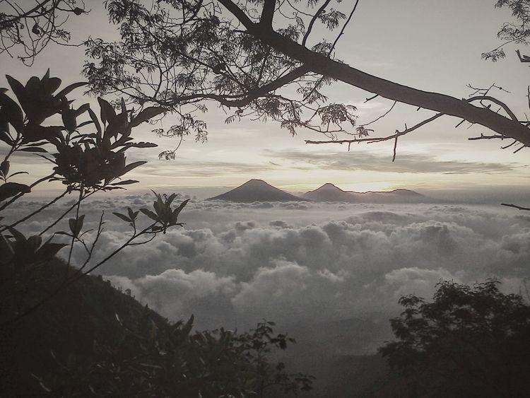 Merbabu Merbabu Mountain Wekas Central Java INDONESIA
