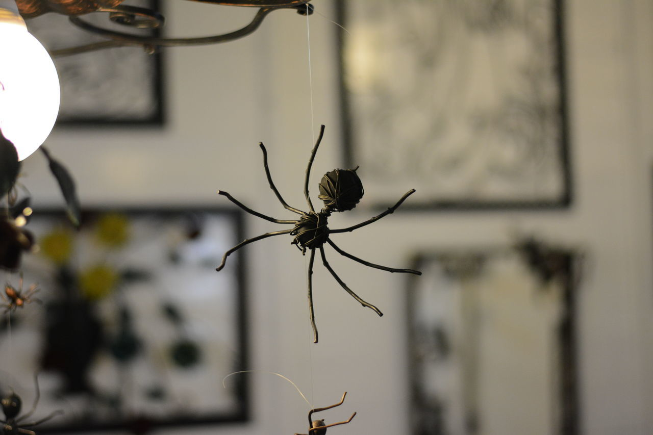Metal spider Animals In The Wild Artigianato Close-up Depth Of Field Focus On Foreground Fragility Insect Metal Metallo Ragno Selective Focus Spider Wildlife Followfriday Followforquality