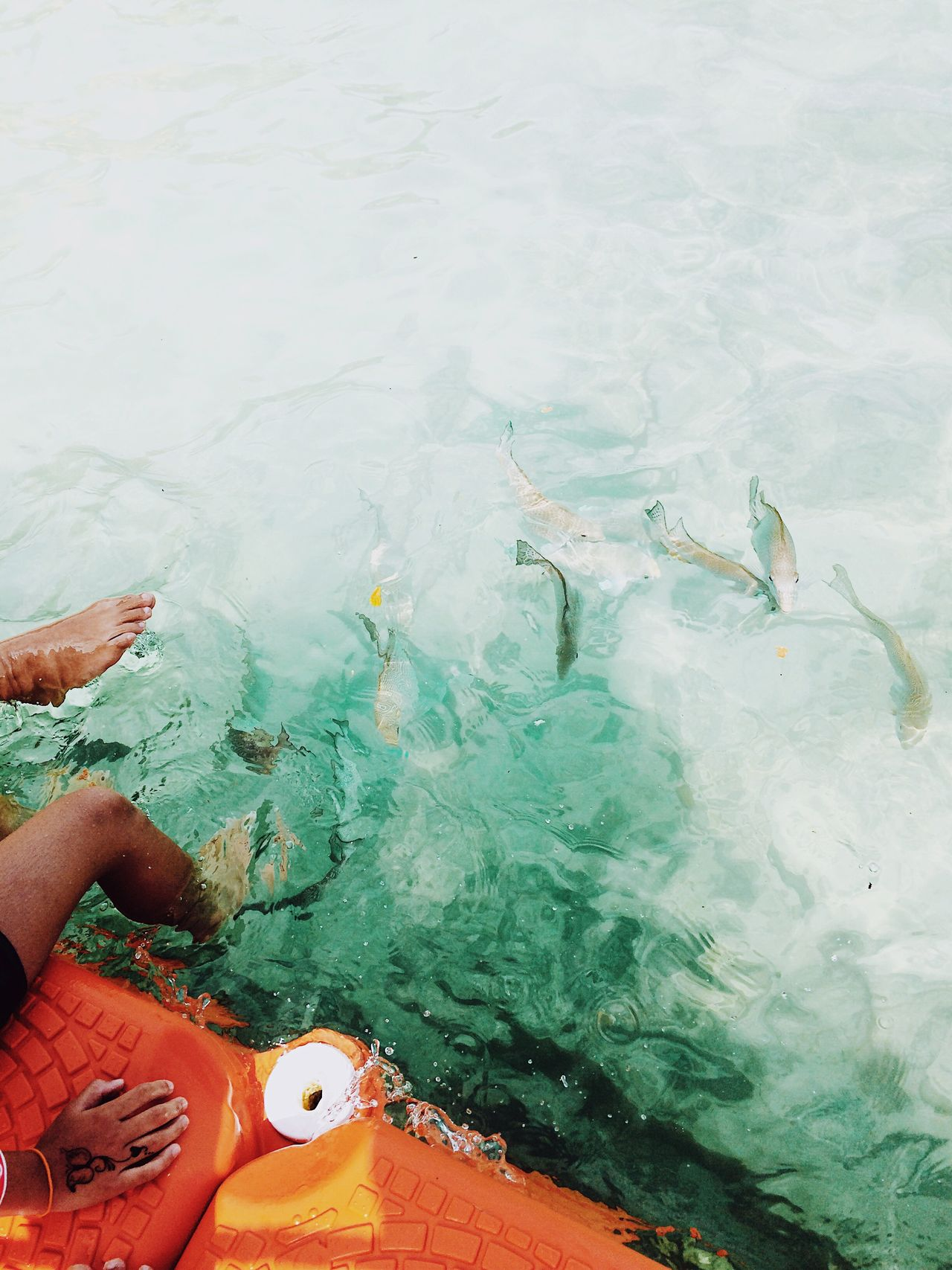 barefoot high angle view water leisure activity day sea outdoors Vacations Swimming Relaxing fish lifestyles travel destinations Tranquility VSCO Cam iPhoneography simplicity blue beauty in Nature island
