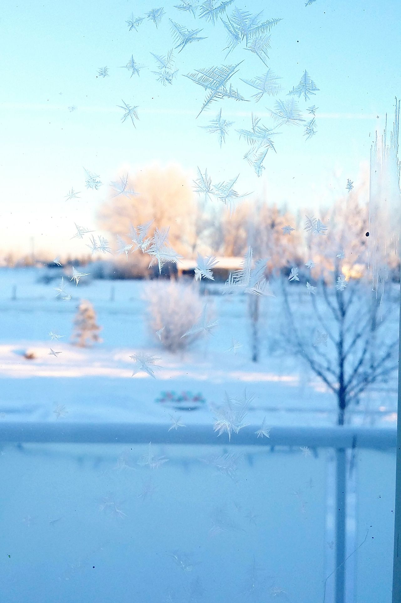 Frost Water Window Swimming Sea Day Indoors  Sky Nature Close-up No People
