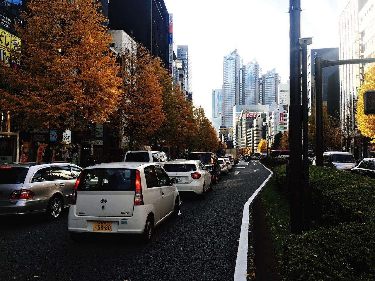 Autumn madness. Car City Transportation Road Tree Traffic City Life Built Structure Architecture Building Exterior Outdoors No People Day