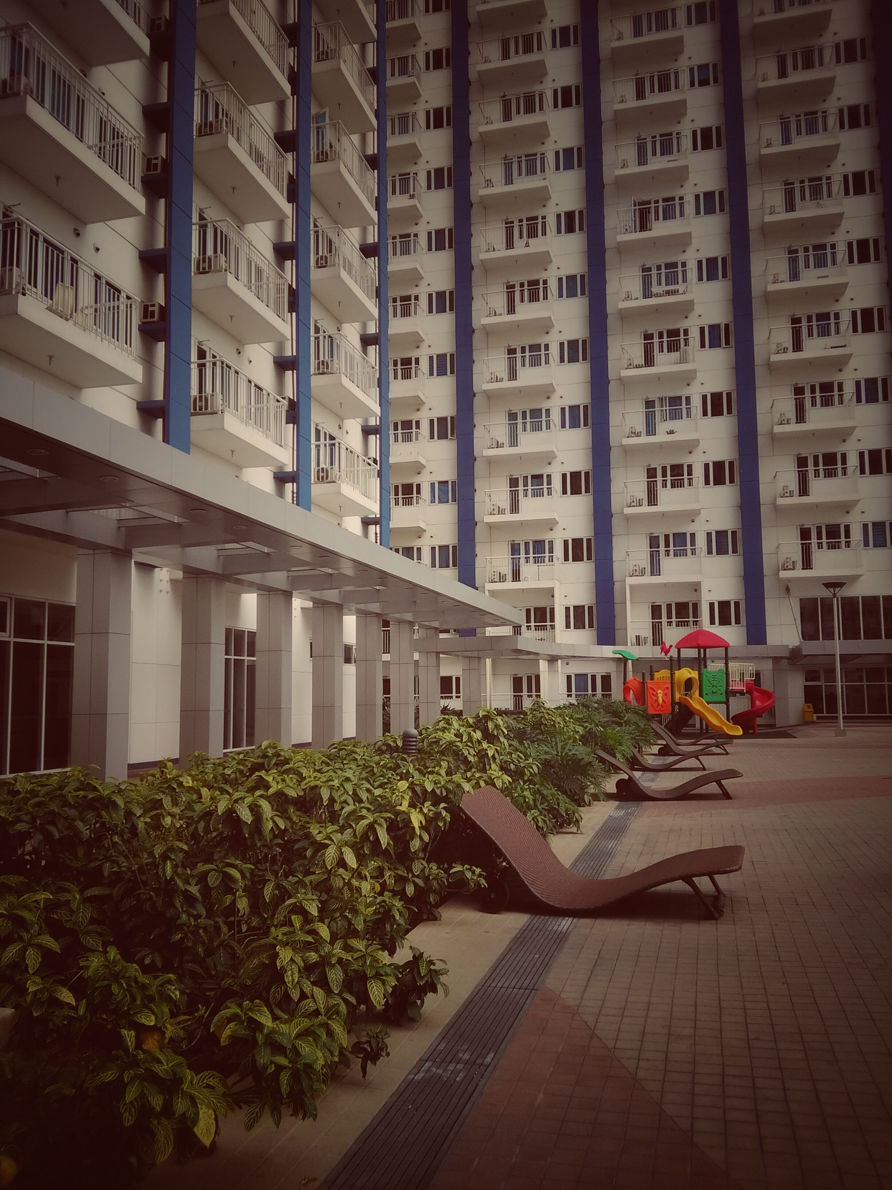 building exterior, architecture, built structure, city, residential building, building, residential structure, outdoors, day, apartment, no people, residential district, city life, plant, facade, growth, exterior, empty, walkway, green color, narrow, the way forward, diminishing perspective