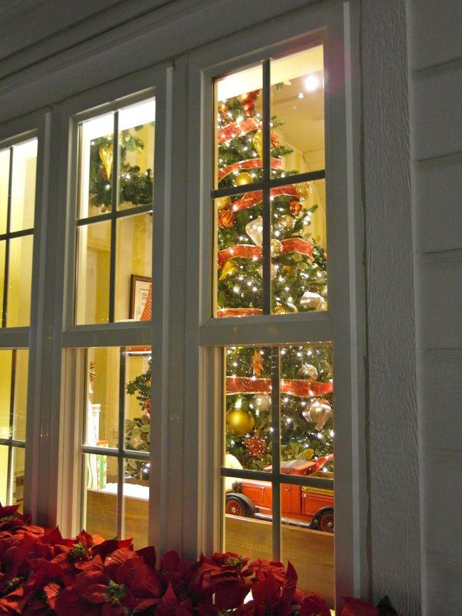 bilder vom weihnachtsbaum auf eyeem finden eyeem