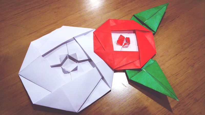 Origami Art Birthdaycard (椿-Camellia)