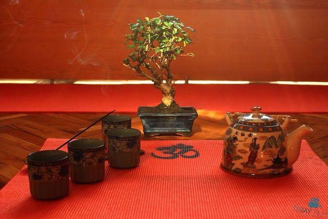 Relaxing WingtsunliveAnkara Meditation Yoga ॐ