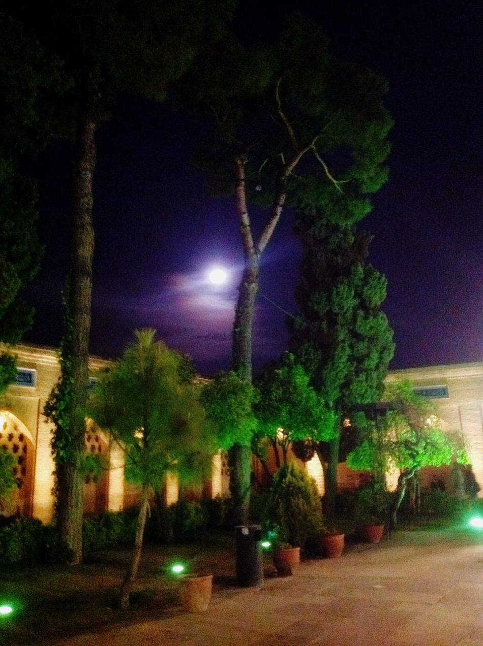 Hafezie Shīrāz Persian Iran Hanging Out Moon Moonlight Sky