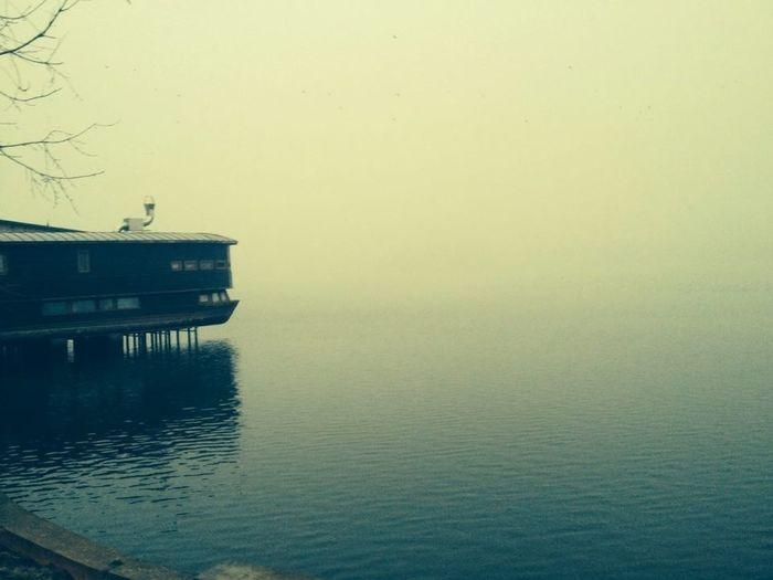 Taking Photos Hello World Landscape Everyday Joy herastrau lake EyeEm Best Shots