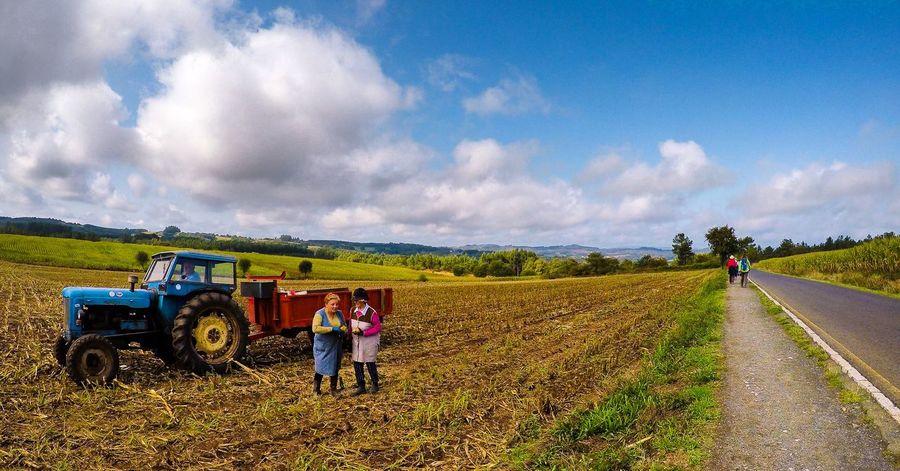 CaminodeSantiago Field Fieldscape Galicia Landscape_Collection Panoramic Panoramic View SPAIN Camino De Santiago Caminofrances Fields And Sky Landscape Landscape_photography Panoramic Photography Pilgrimage