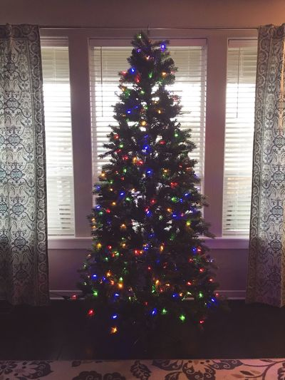 Christmas Tree Colored Lights Celebrating Early Family Visiting Thanks-mas