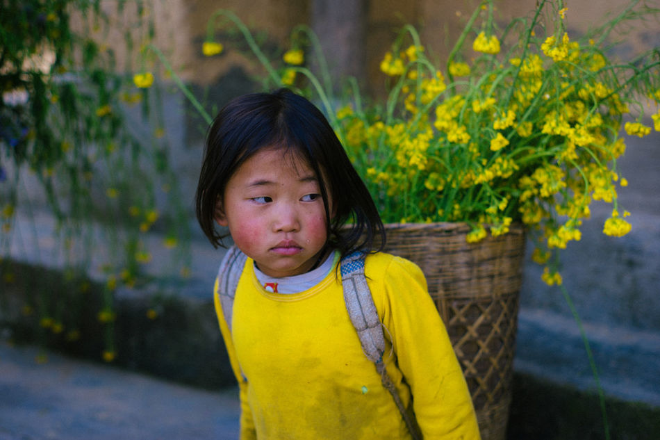 Memories about Ha Giang, Viet Nam. Asian  Child Childhood Children Only Close-up Ethnic Pride Flower Ha Giang, Vietnam Nature People Portrait Travel Trip Viet Nam Yellow