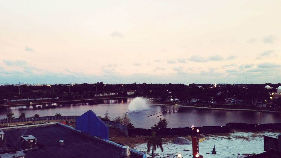 Hollywood Florida, Hard Rock Casino Grounds...