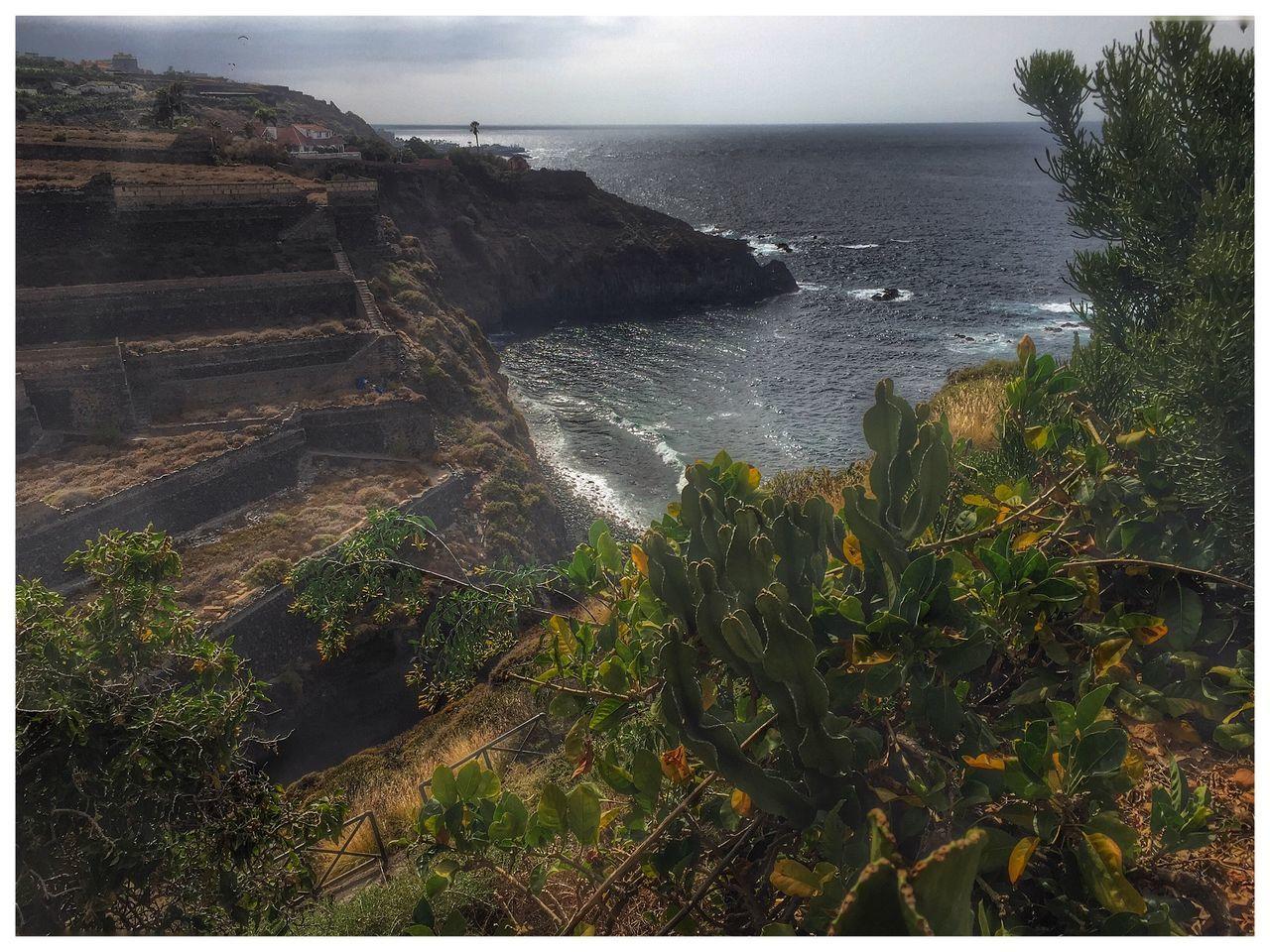 A Bird's Eye View Cliff Sea Sky No People Ocean Palm Trees Cactus