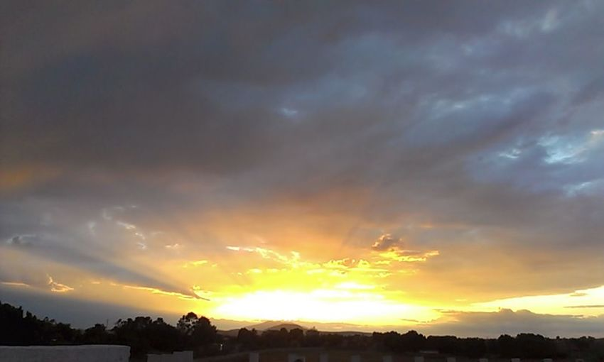El Sol / The Sun
