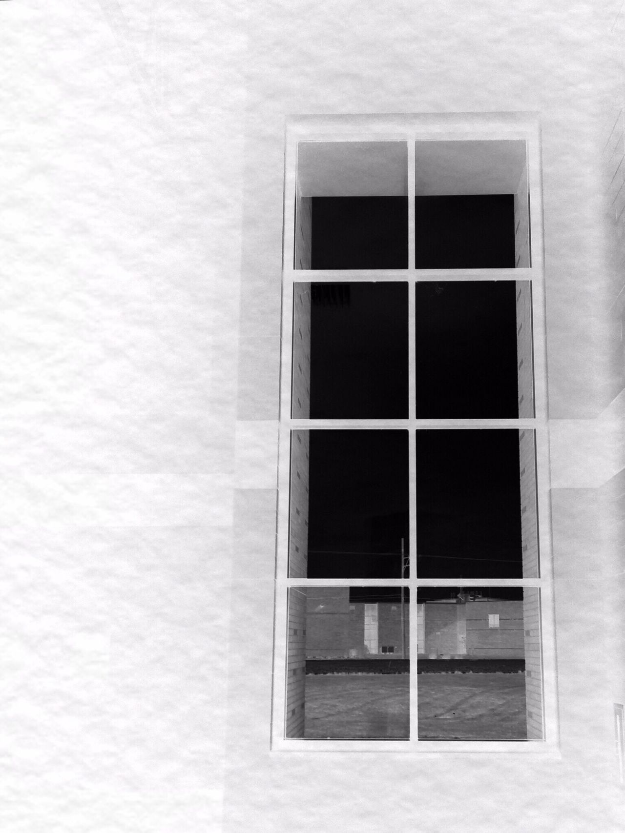 Large Windows Window Looking Out Black And White Textured Wall Oswego, IL