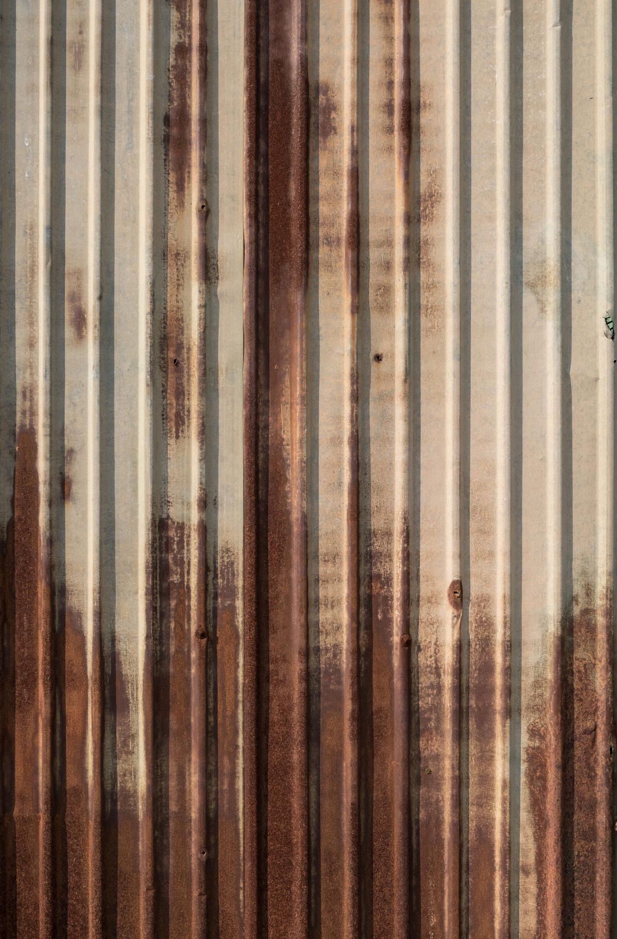 Rusted green zinc fence in sunny day. Green Color Backgrounds Corrugated Iron Fences Full Frame Groovemetal Metal Sheets Old Outdoors Pattern Roofing Rusty Textured  Vintage Zinc