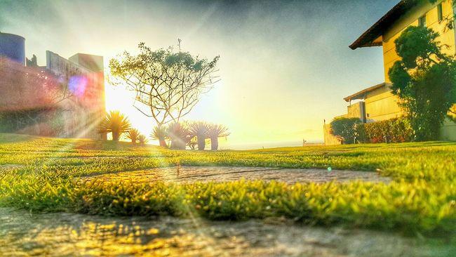 Bom dia :D🙏 Que Deus Abençoe a Todos :D🙏 O Senhor é o meu pastor e nada me faltará :D🙏 Glória a Deus :D🙏 Amém :D🙏 Local: Ilha do Frade /Vitória /ES /BR Ilha Do Frade Vitoria-es Praia Ocean Nature Raiosdesol Manhã Sol Sun Natureza #hdr