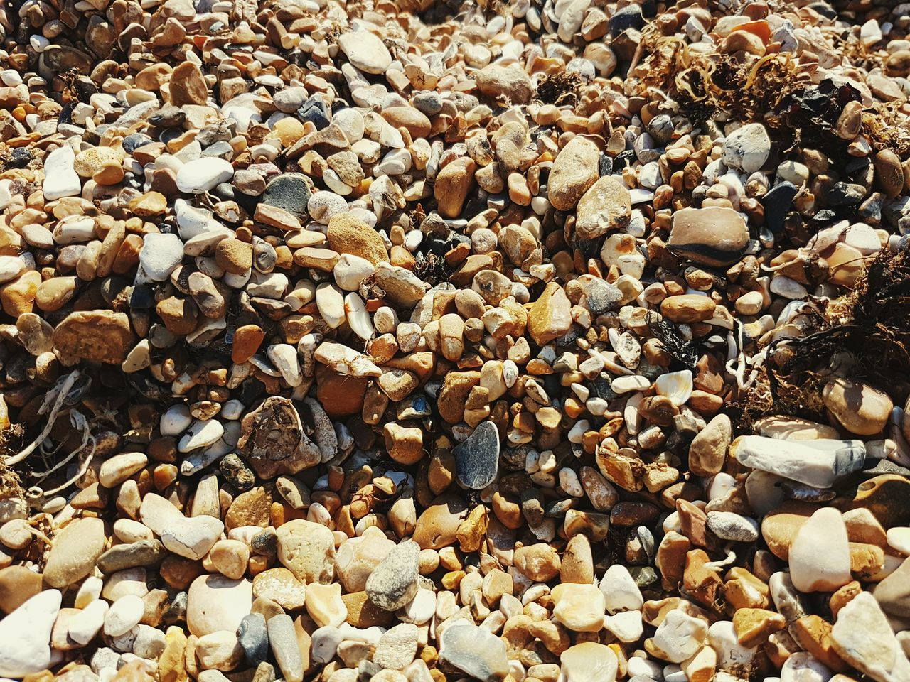 Abundance Large Group Of Objects Full Frame Backgrounds No People Outdoors Day Beauty In Nature Beach Pebbles