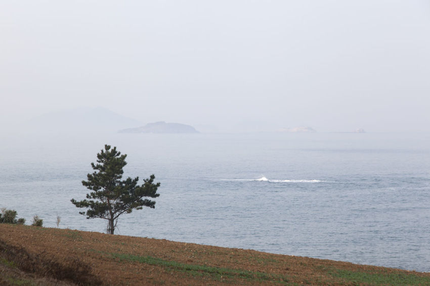 Seaside view of Gyeokpo Beach in Byeonsan, Buan, Jeonbuk, South Korea Beauty In Nature Day Grass Gyeokpo Horizon Over Water Landscape Mountain Nature No People Outdoors Scenics Sea Sky Tranquil Scene Tranquility Tree Water