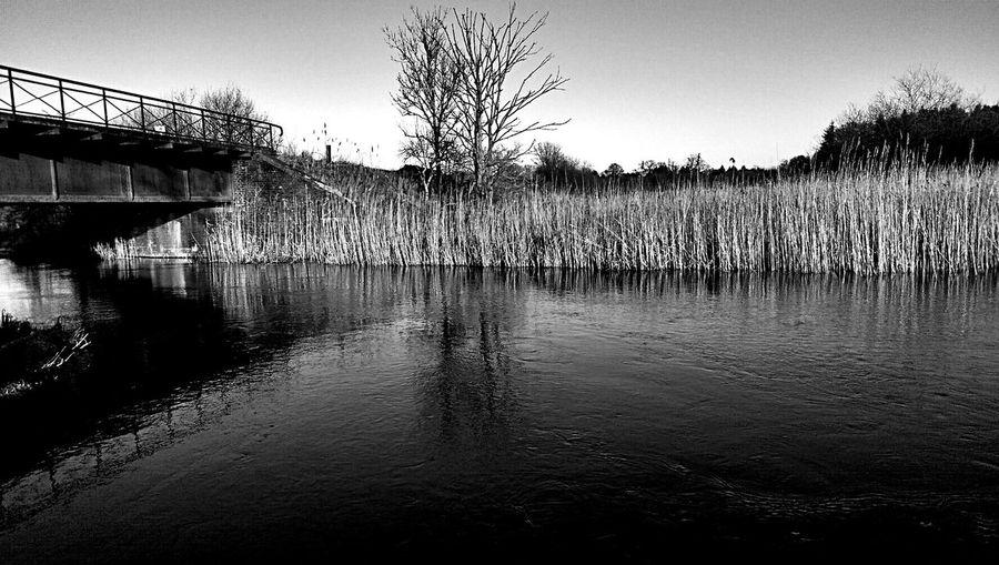 Blackandwhite Eider River Taking Photos Hanging Out Relaxing