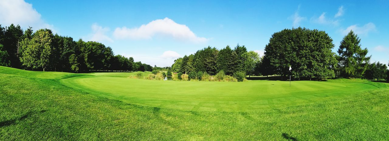 tree, golf, golf course, green color, grass, sky, nature, scenics, beauty in nature, green - golf course, tranquility, sport, no people, day, landscape, growth, outdoors