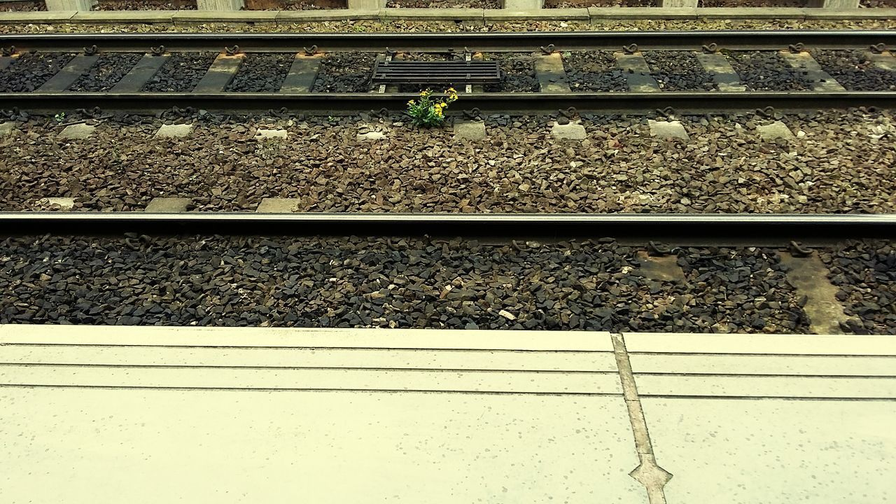 Railroad Track Transportation Rail Transportation High Angle View Day Outdoors No People
