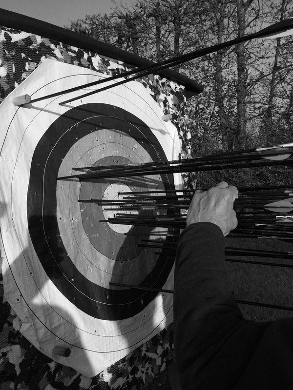 Arrows Archery Target Shooting Target Practice Target Field Target Archery Target