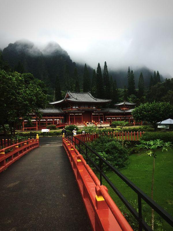 Outdoors Beauty In Nature Illuminated Flower Nature Trees And Sky Night Sun Streaks Sunset Buddhist Temple