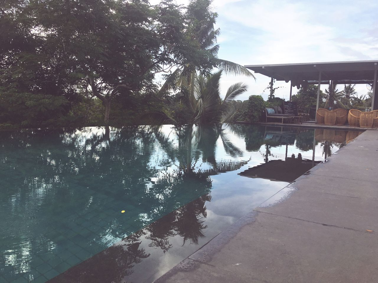 Bali Ubud Infinity Pool Swimming Pool Reflection Forest Swimming Paradise Picturesque Scenic Breathtaking View
