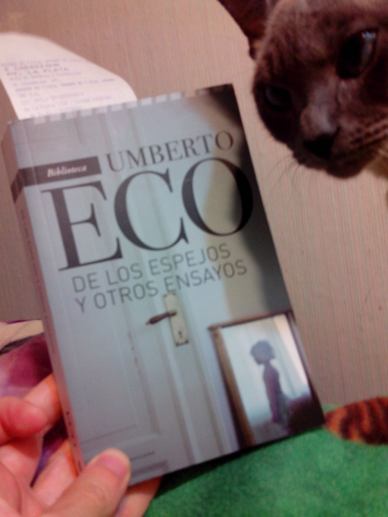 Indispensable lectura de Umberto Eco y la semiotica de los espejos y la mirada.