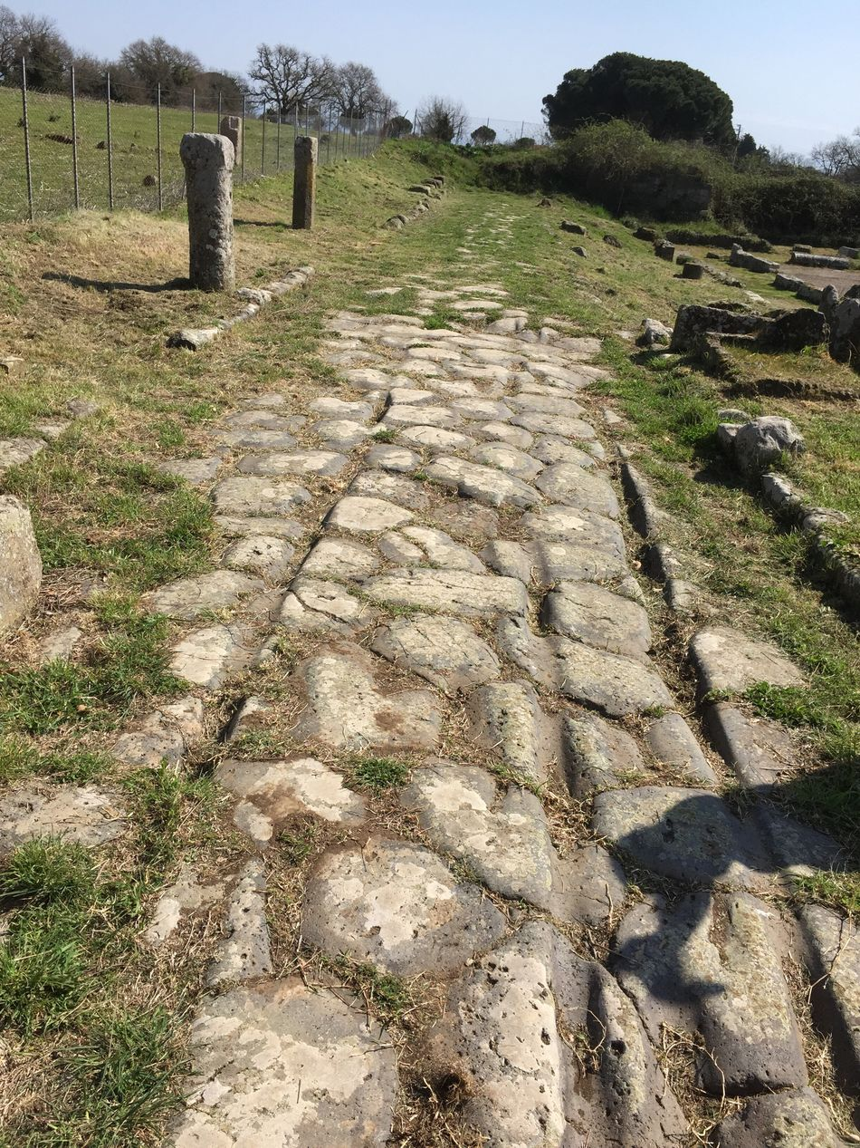 Roman Road Ancient Ancient Civilization Ancient Architecture Ancient Ruins Ancient Building Ancient Culture Ancient Beauty Amphitheatre Ruins Ruins_photography Ruins Architecture Roman Ruins Ferentium Viterbo Vitorchiano Roman Architecture Roman Roman Bath Italy Italy❤️ Italia Italy🇮🇹 All Roads Lead To Rome -series Wheel Tracks