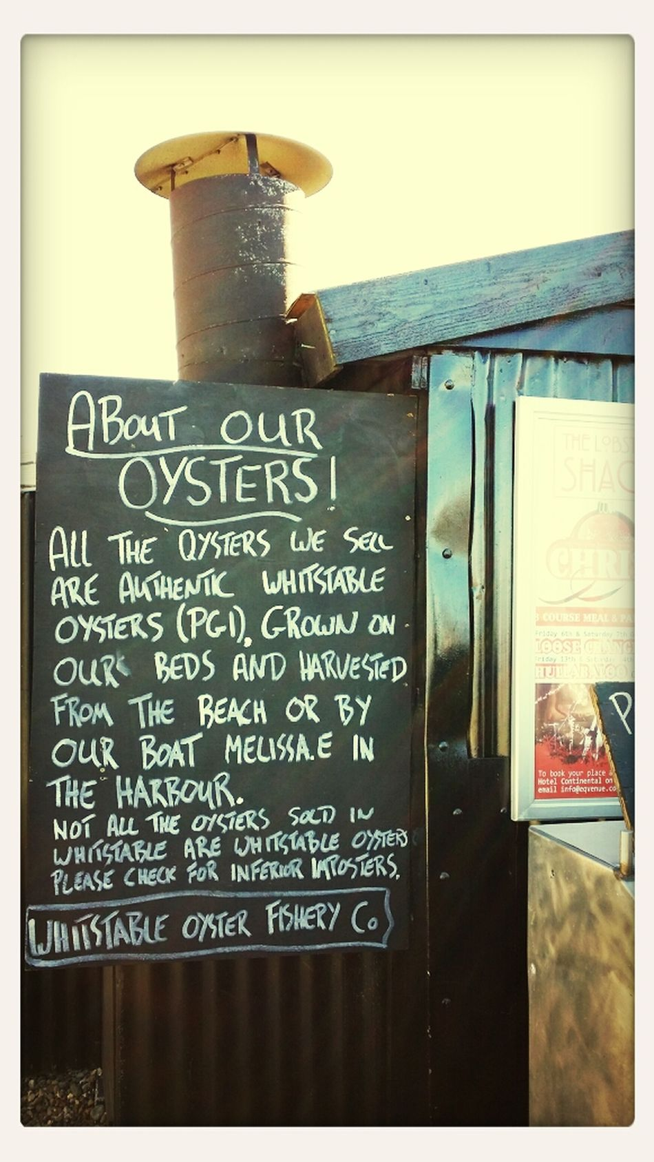 Our Oysters