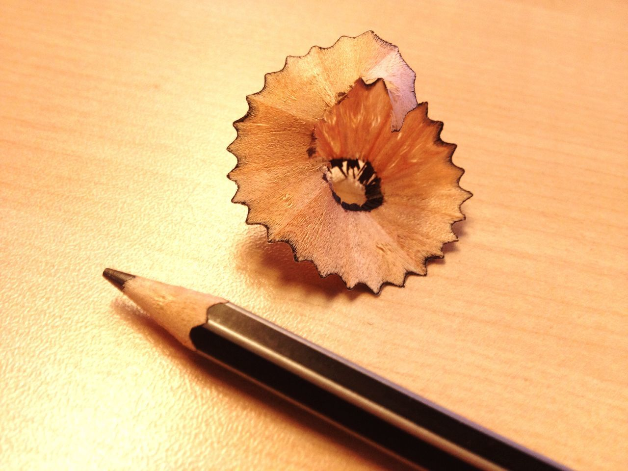 Pencil Shavings Pencil Wood - Material Curled Up Close-up No People Desk Office Indoors