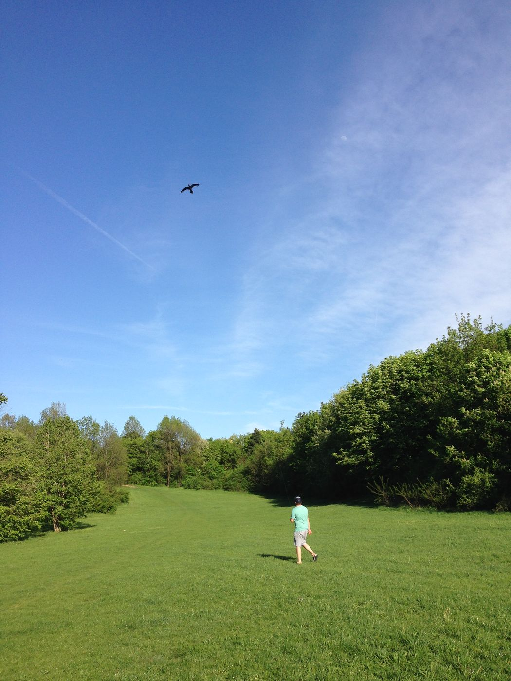 Me Blue Flying Full Length Grass Green Color Kite Kite Flying One Person Zero Wind Kite Live For The Story EyeEmNewHere