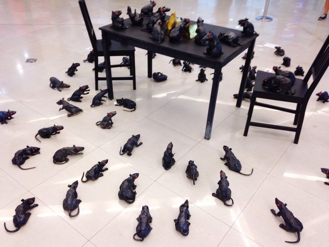 Family rats Black Rats Black Table Big Rats Installation Art Exhibition Bangkok