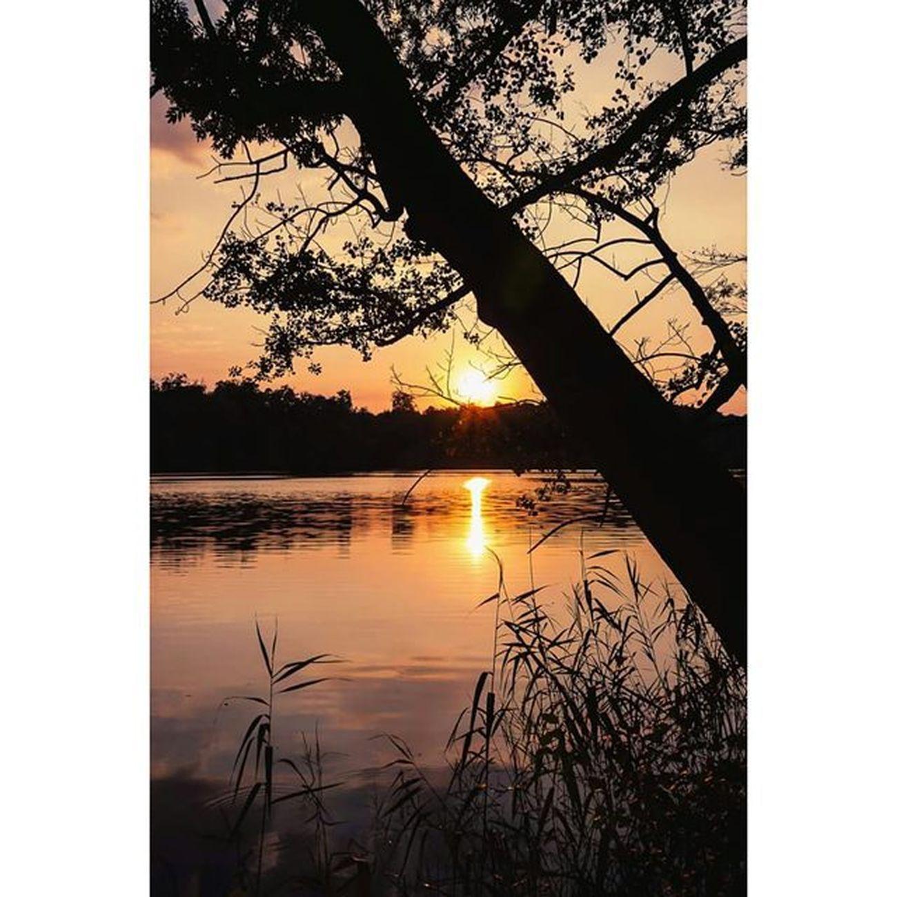 Sonnenuntergang am Hellsee (Brandenburg). Michaellangerfotografie Sunset Photography Silhouette Fotografie Photographyislife