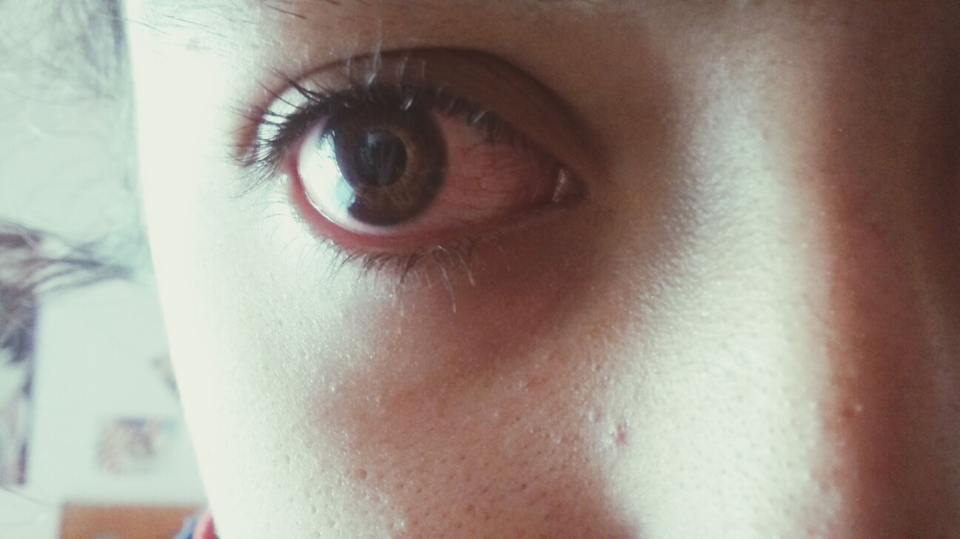 human eye, indoors, close-up, part of, eyelash, human skin, eyesight, portrait, looking at camera, extreme close-up, sensory perception, human face, lifestyles, unrecognizable person, person, iris - eye, cropped