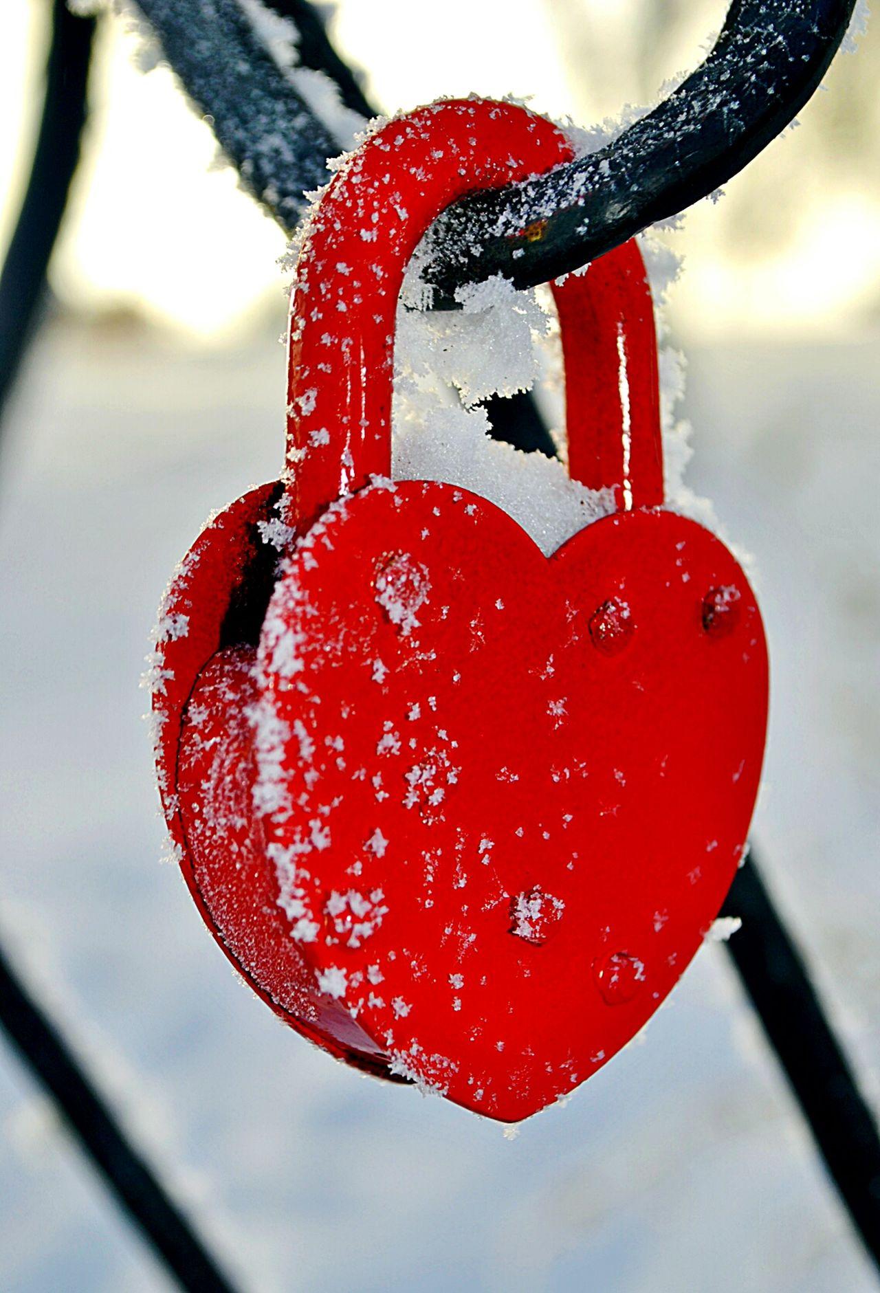 Red Love Wedding Metal Padlocks Love Lock Love Lock Red Padlock Winter